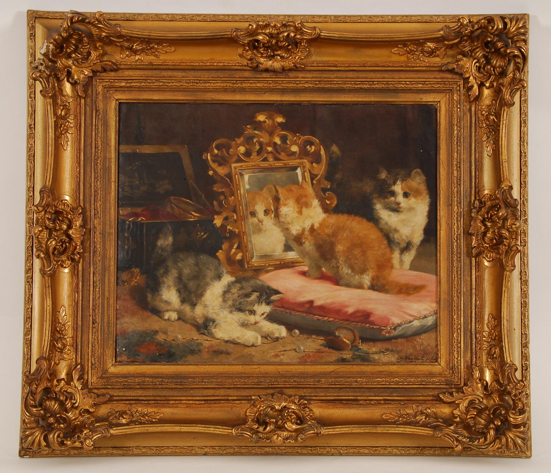 Jeunes chats dans leurs ébats