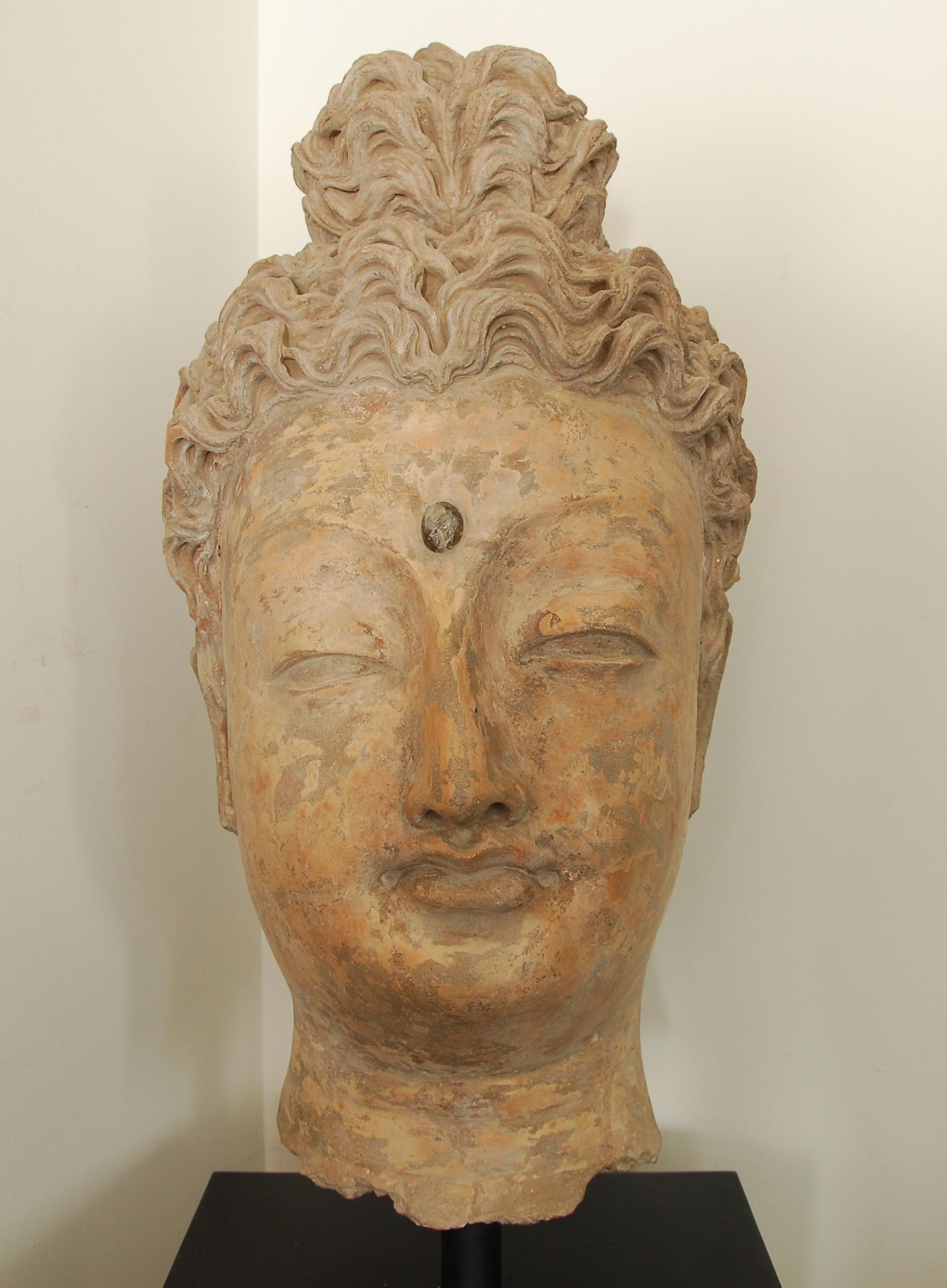 Importante tête de bouddha